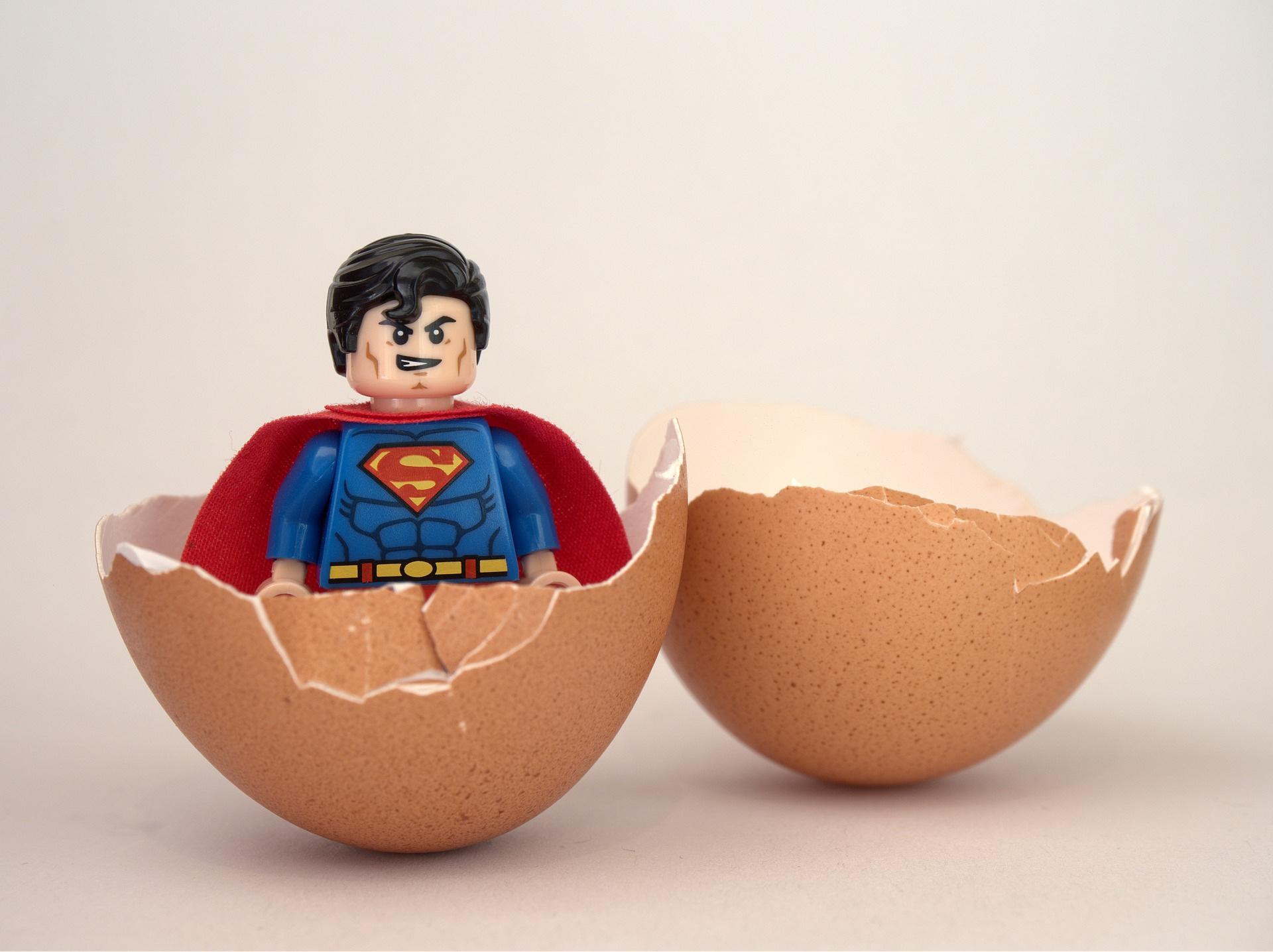 卵から産まれたスーパーマン
