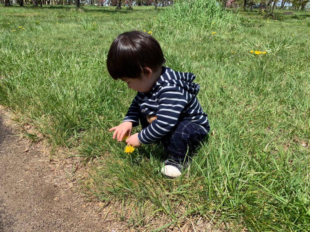 花で遊ぶ男の子