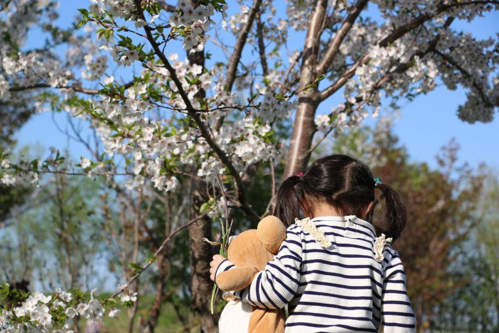 桜とリラックマと女の子