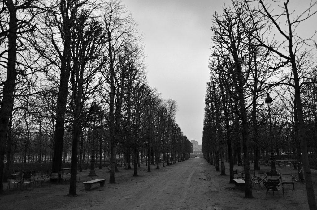 白黒の公園