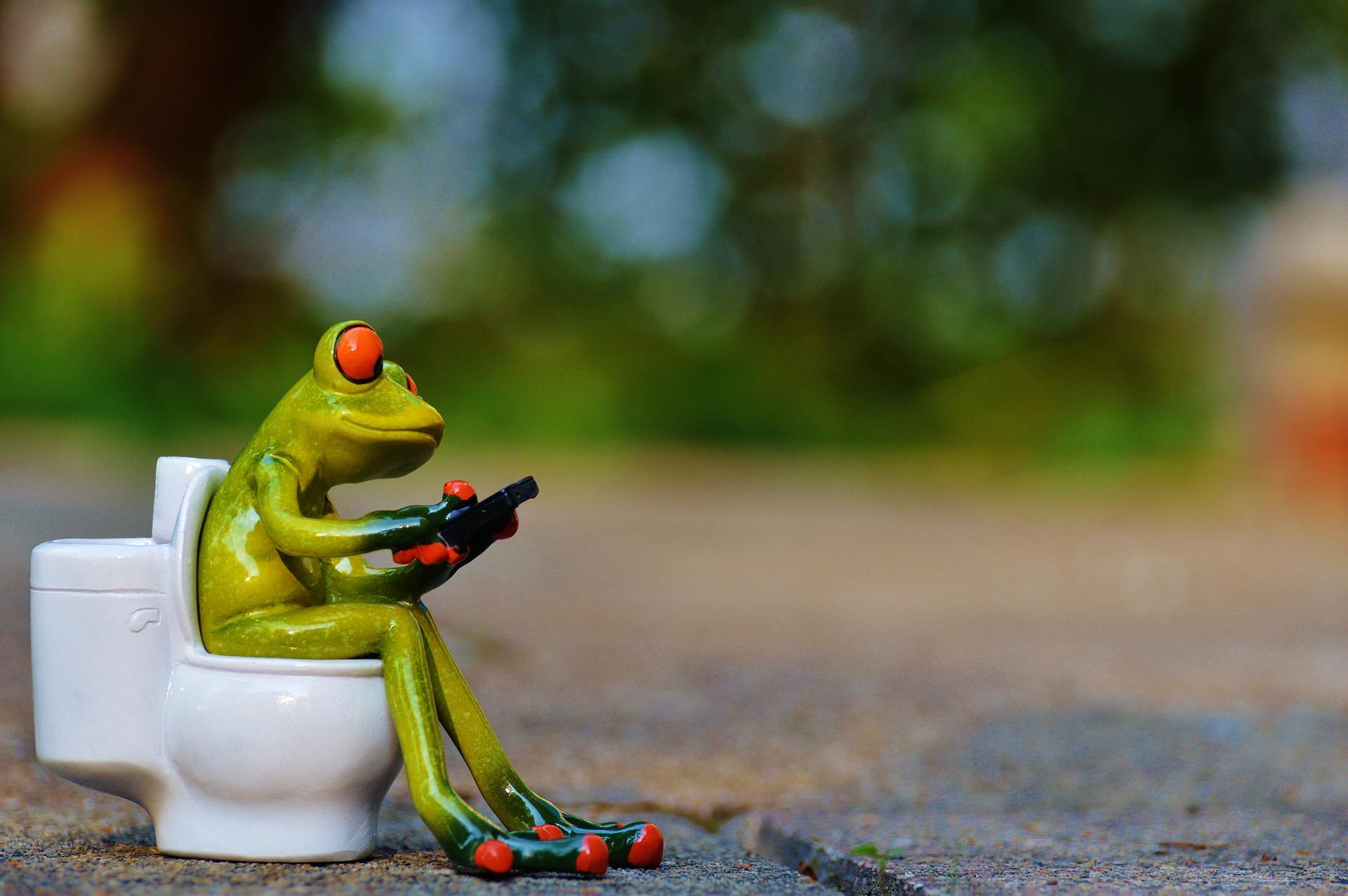 トイレでスマホを使うカエル