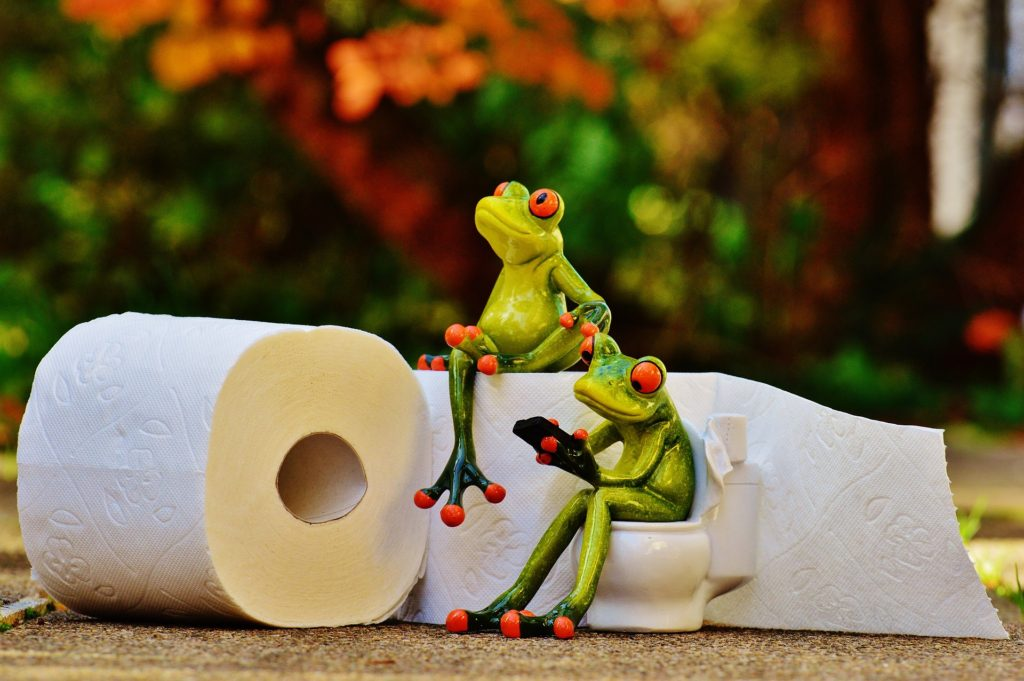 トイレを待つカエル