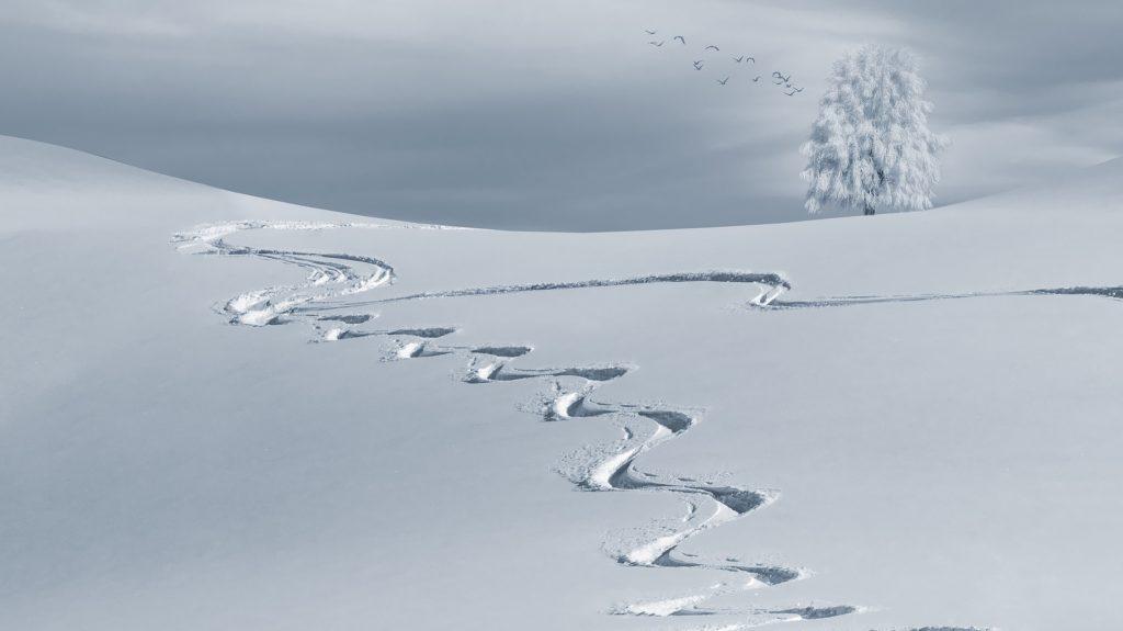 雪道-冬の景色