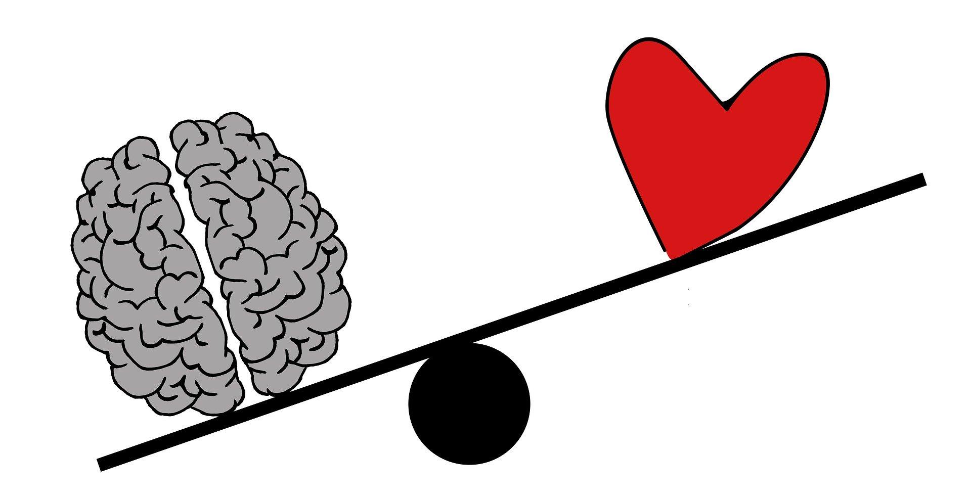 脳と心-バランス