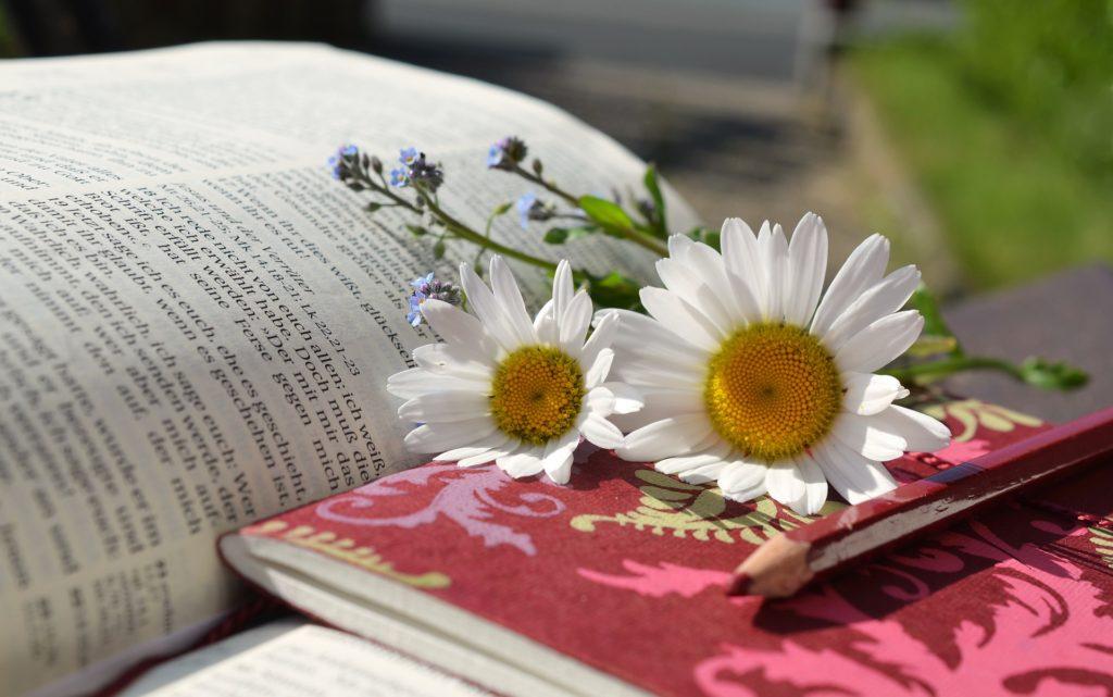 花と本-言葉の意味