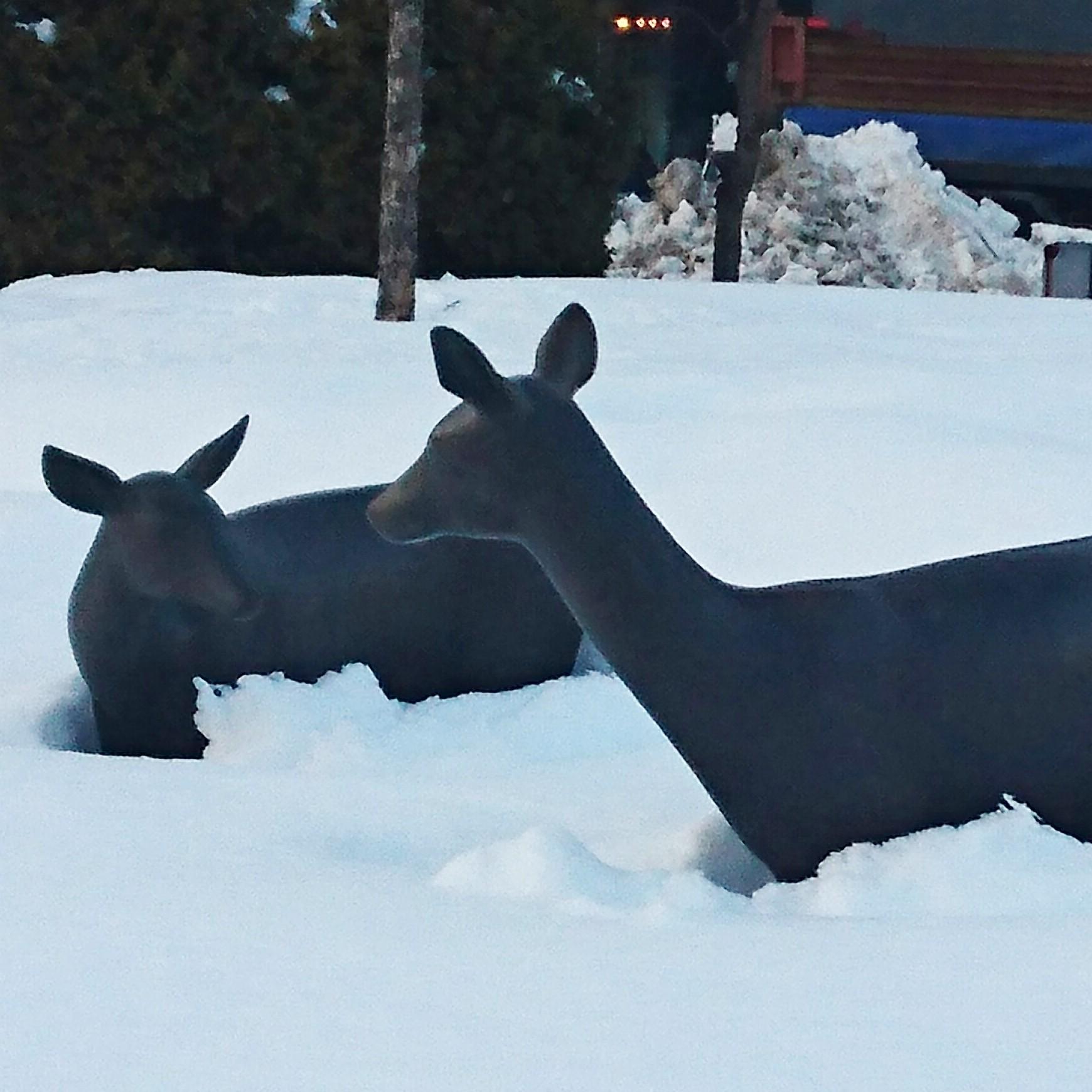 鹿の銅像-積雪