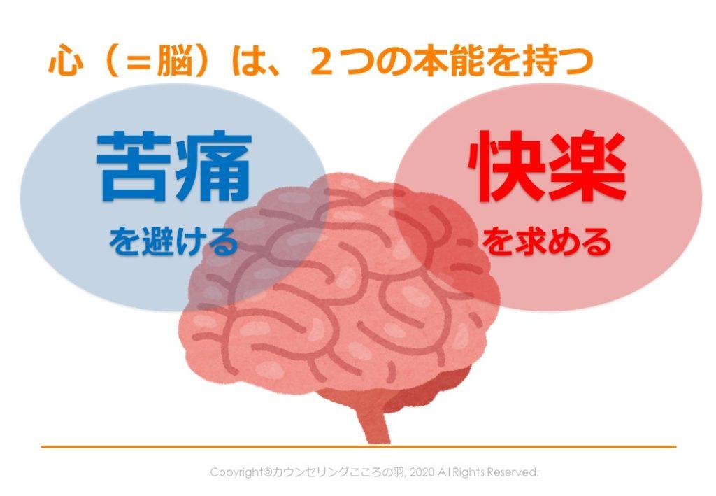 心=脳は2つの本能を持つ-苦痛を避ける-快楽を求める
